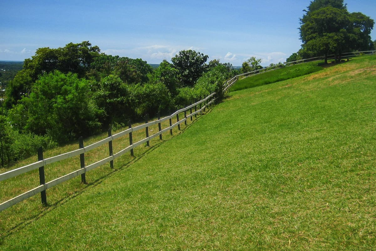 The fence around the ranch!