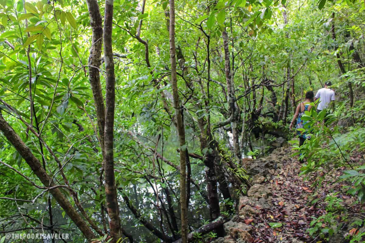Through the lush jungle of Danjugan Island