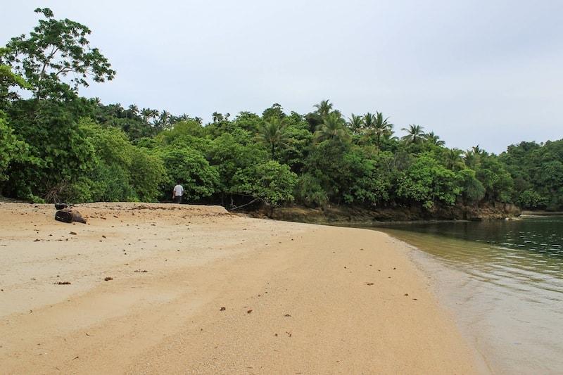 Turtle Beach, where turtles lay eggs