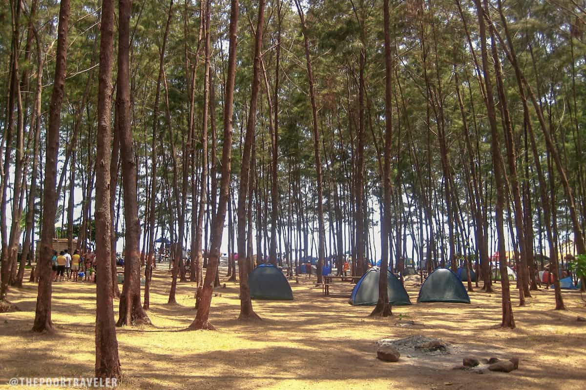 The camp area of Anawangin