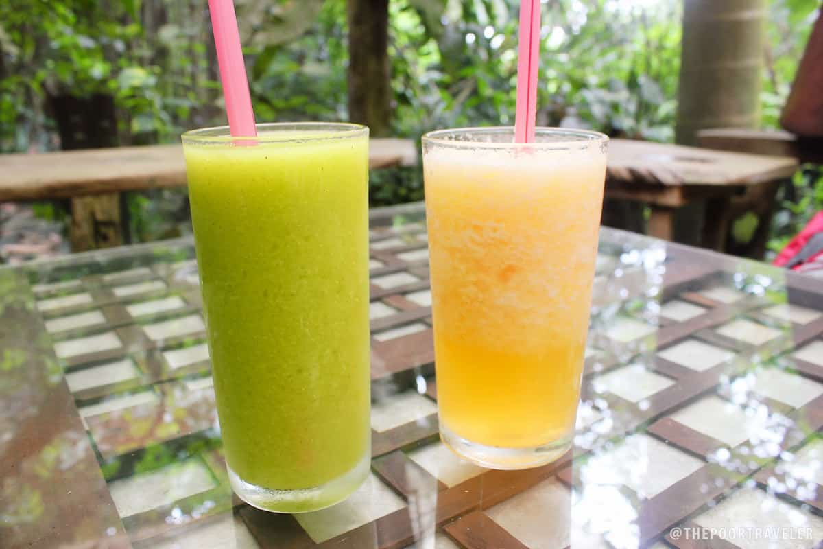 Fruit shakes (avocado and cantaloupe)