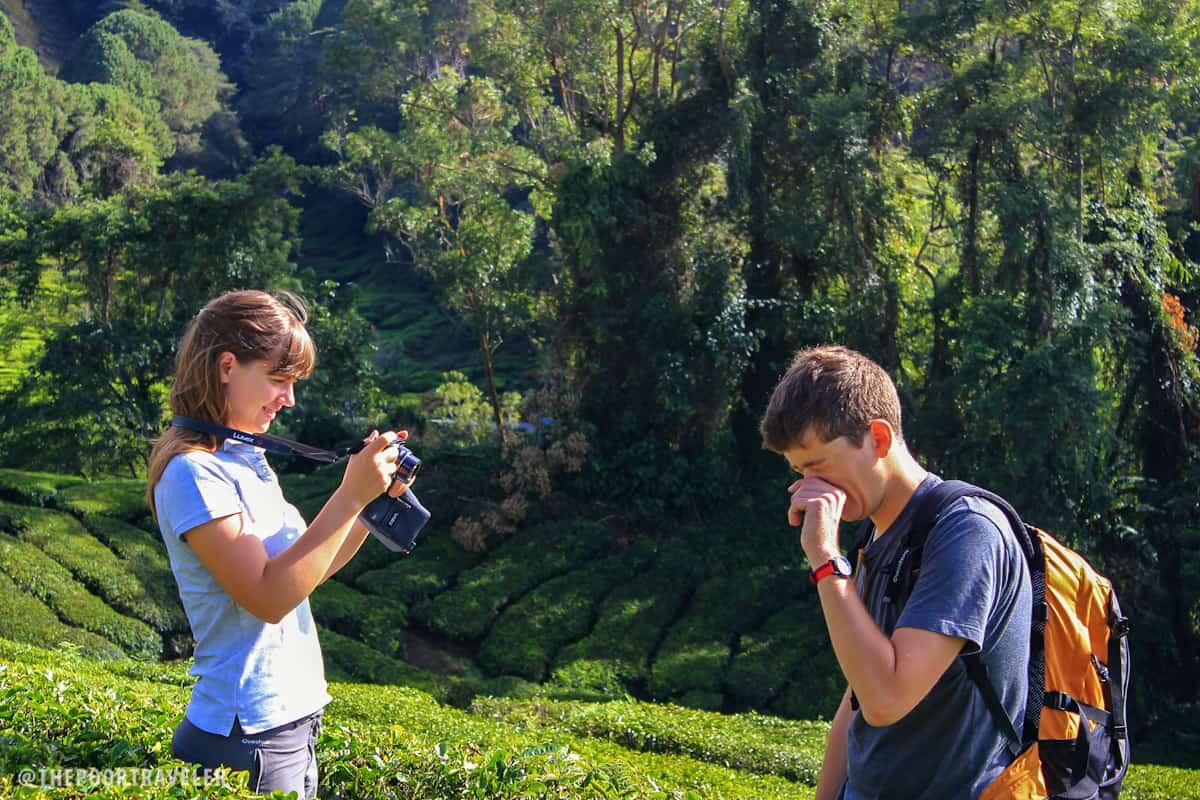 French lovebirds at a tea farm