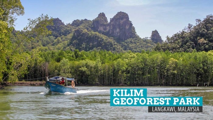 Kilim Geoforest Park: The Soaring Spirits in Langkawi, Malaysia