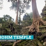 Ta Prohm Temple: The Crushing Embrace in Angkor, Siem Reap, Cambodia