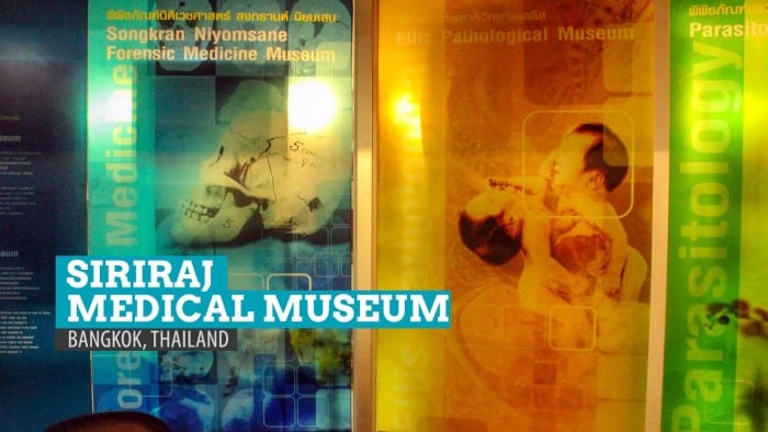 Siriraj Medical Museum: Freaky Forensics and Deathly Displays