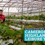 Malaysia: 10 Places to Visit on a Cameron Highlands Day Tour