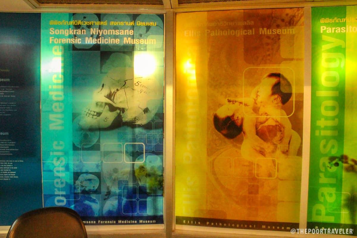 Bangkok Siriraj Forensic Museum