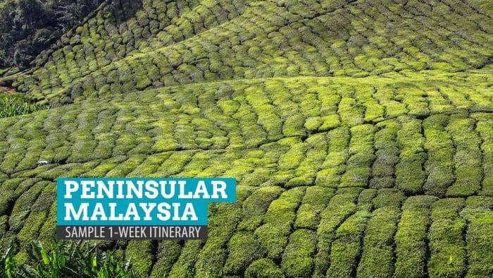Peninsular Malaysia: Sample 1-Week Itinerary