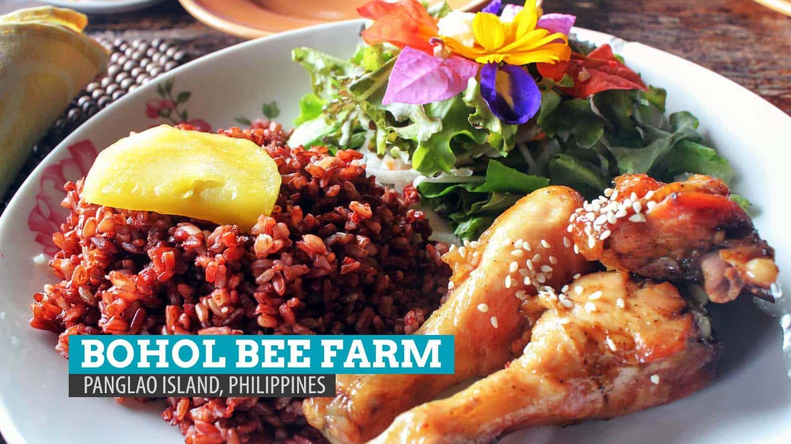 Bohol Bee Farm: A Bee-autiful Dining Experience in Panglao Island