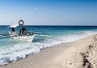 Balicasag Island (Dolphin Watching and snorkeling)