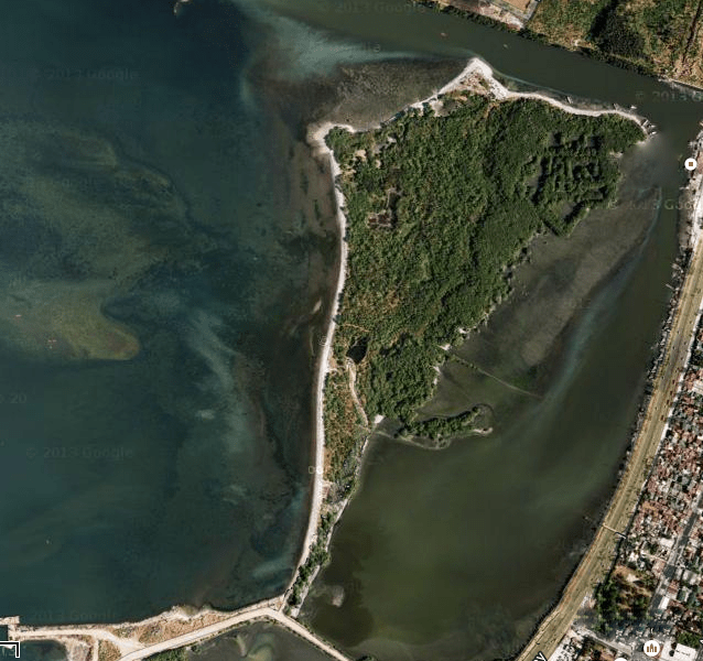 Satellite image of Freedom Island, courtesy of Google Maps