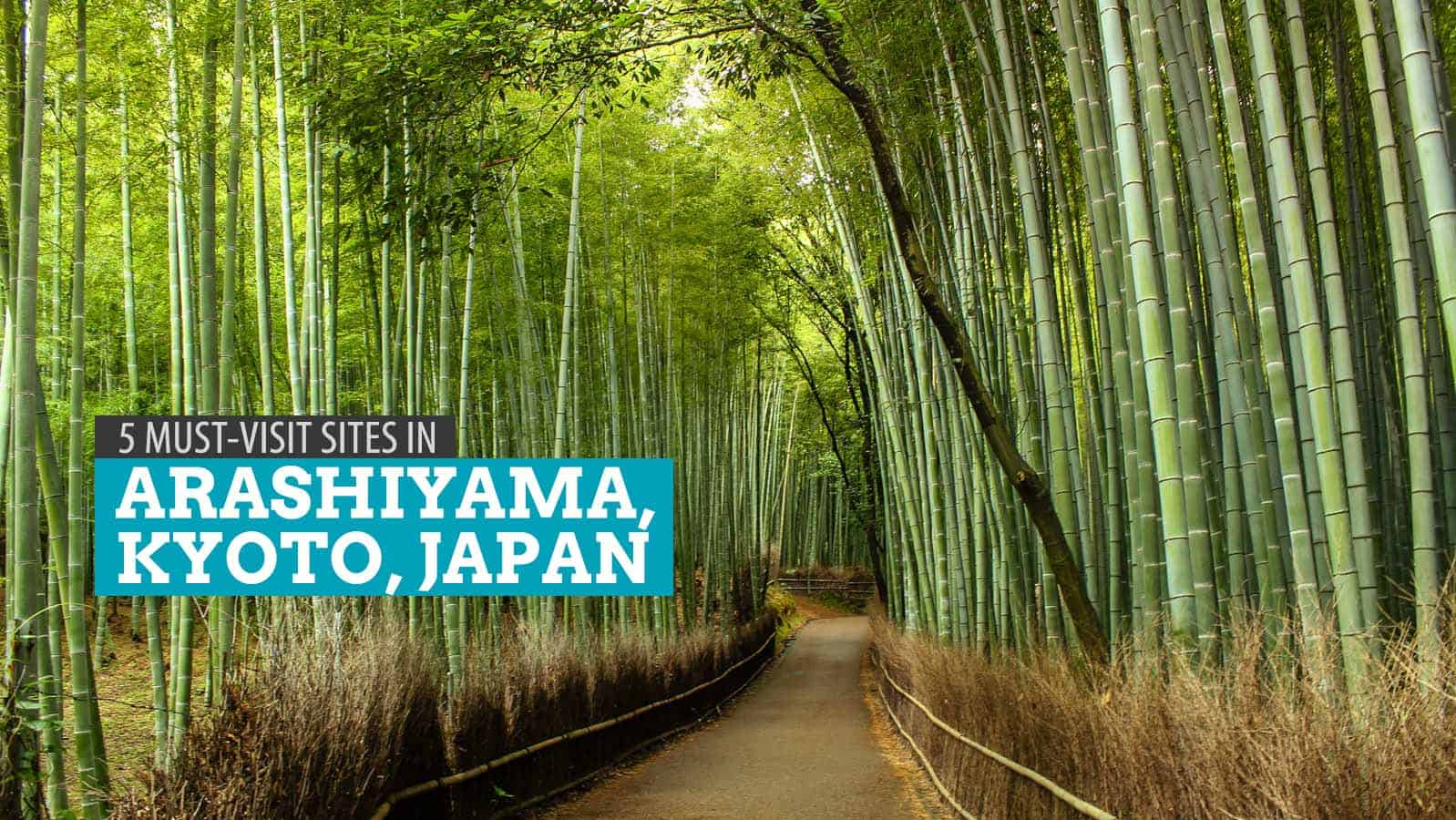 ARASHIYAMA, KYOTO: A DIY Walking Tour