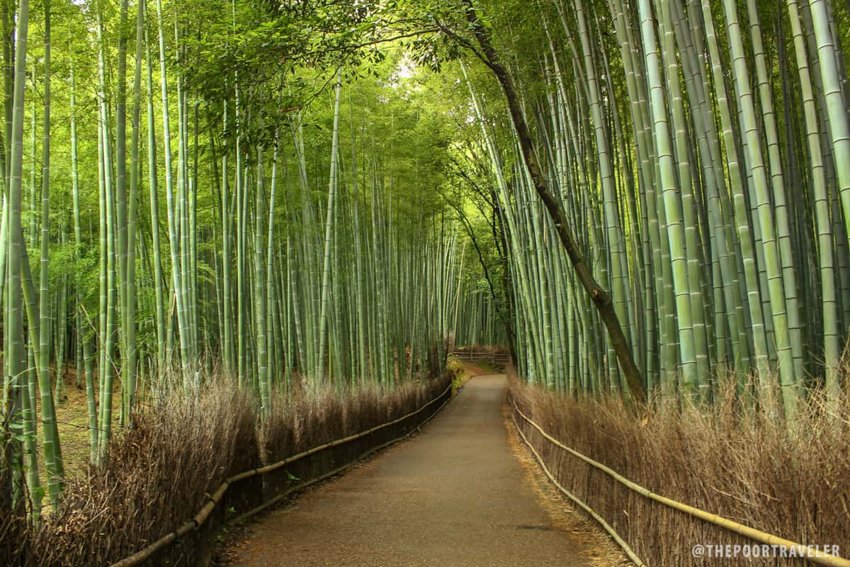 5 Must Visit Sites In Arashiyama Kyoto Japan A Diy Interiors Inside Ideas Interiors design about Everything [magnanprojects.com]
