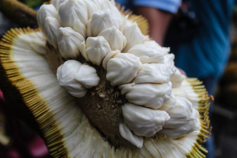 First Taste of Marang Fruit – South Cotabato, Philippines