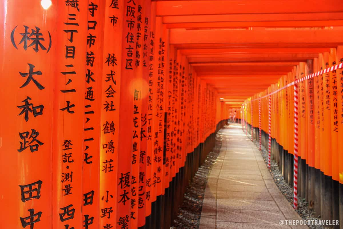 Orange tunnel: the thousand torii gates