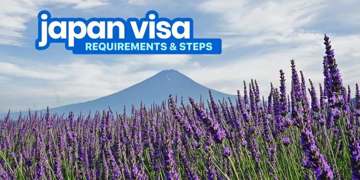 2020 JAPAN VISA REQUIREMENTS & Application for Tourists