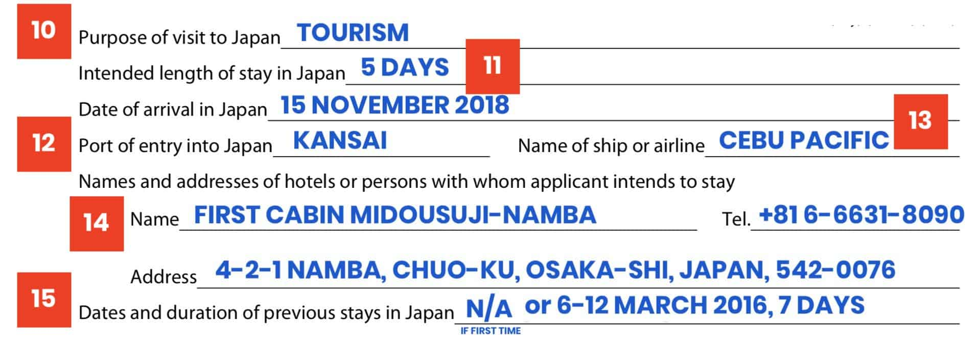 JAPAN VISA APPLICATION FORM: Sample + How to Fill it Out
