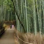 Snapshot: Lovers in Arashiyama Bamboo Forest – Kyoto, Japan