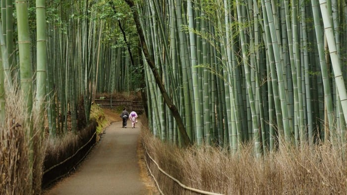 Snapshot: Lovers in Arashiyama Bamboo Forest – Kyoto, Japan