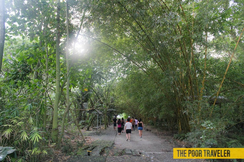 Baras Bird Sanctuary is an eco-tourism destination in Tacurong City