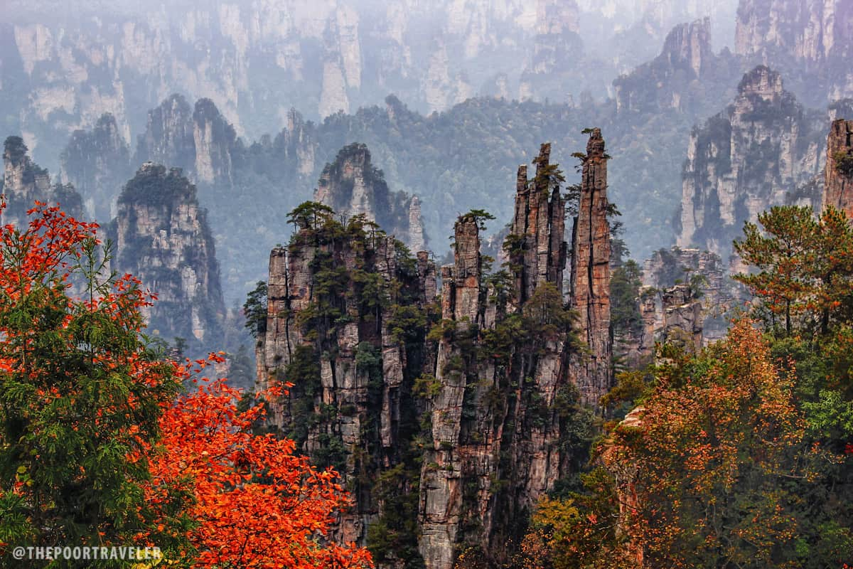 Yu Bi Peaks (Imperial Brush Peaks). The pine trees that crown this cluster of columns make it look like an enormous set of traditional Chinese painting brushes. Local lore has it that the gods painted Zhangjiajie, which tries to explain the incredible beauty of the region.