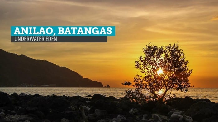 Anilao, Batangas: Above the Surface of an Underwater Eden