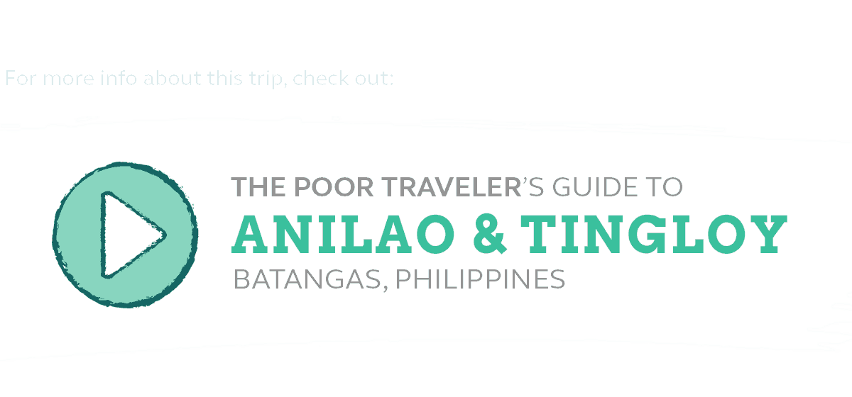 Anilao Travel Guide