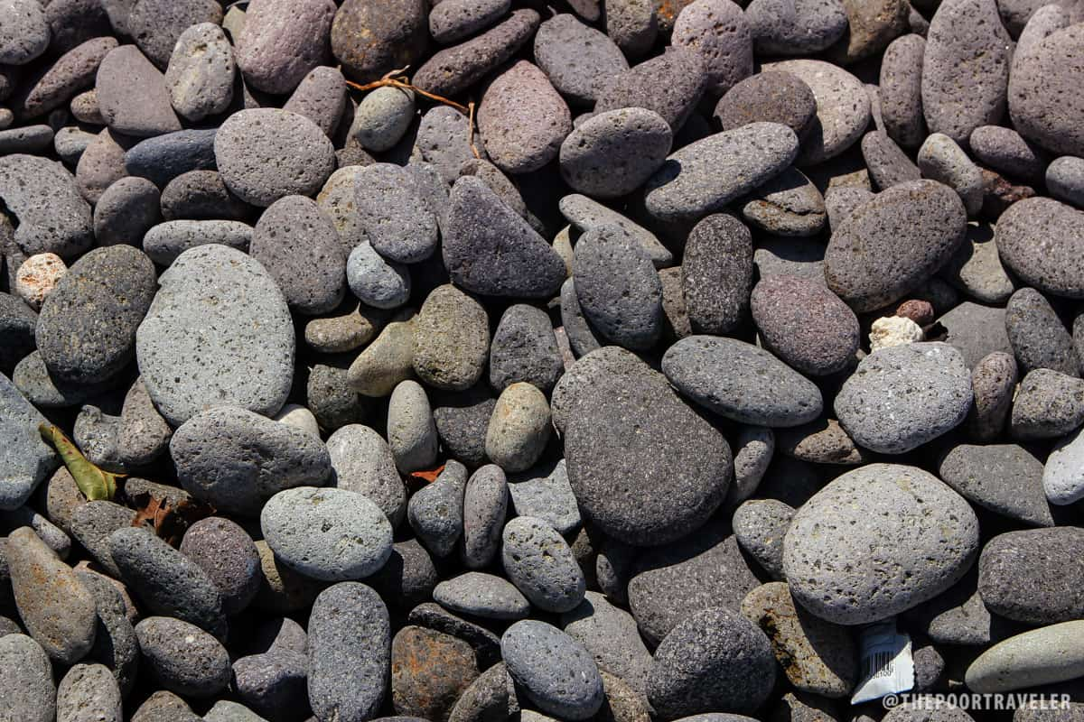 Small- to medium-size cobbles make up this unusual beach