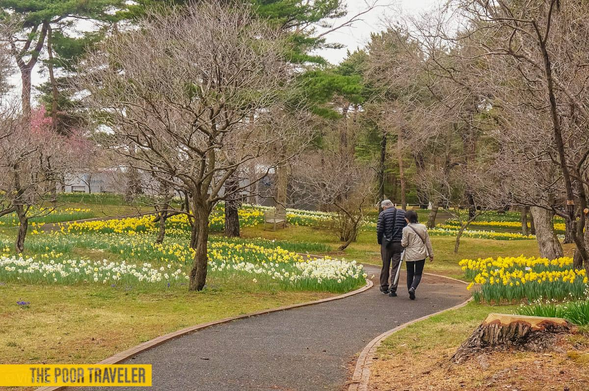 Despite the gloomy weather, a walk around the park can brighten up one's day!