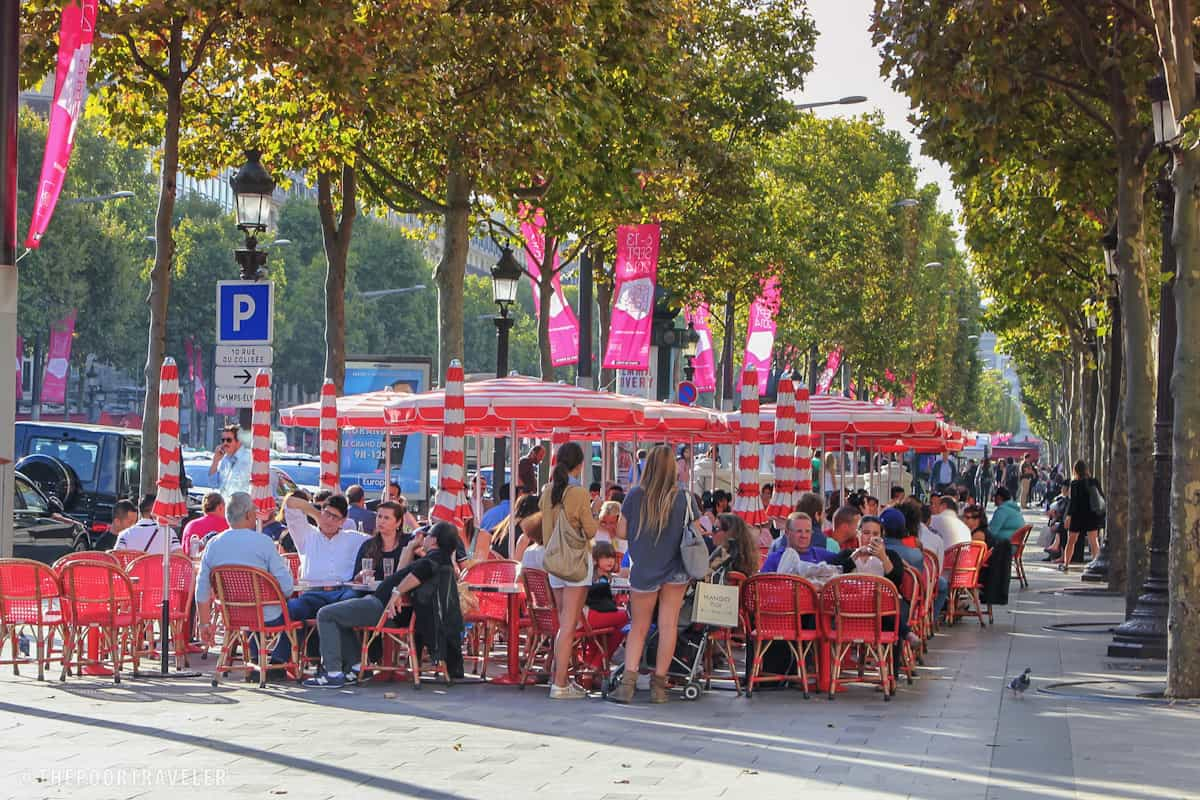 Pavement restaurants amid tree groves