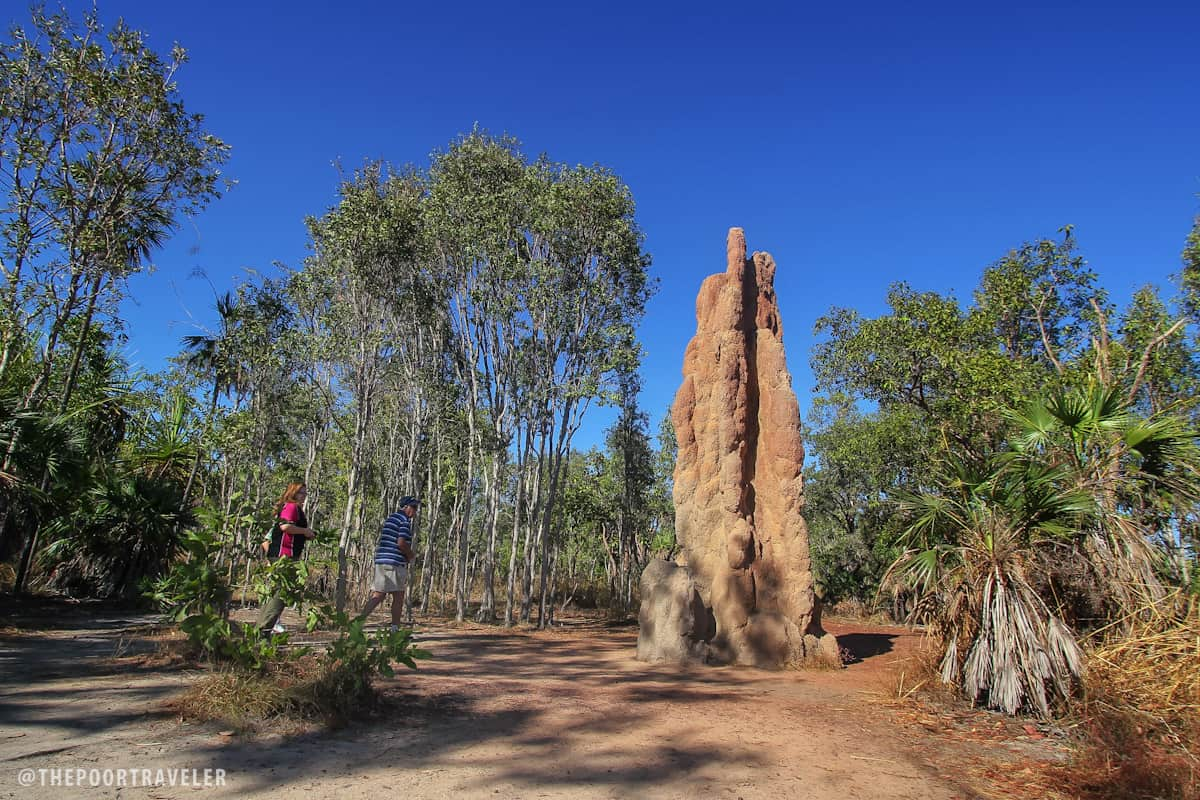 Cathedral Termite Mound. See how tall it is compared to the two tourists next to it?