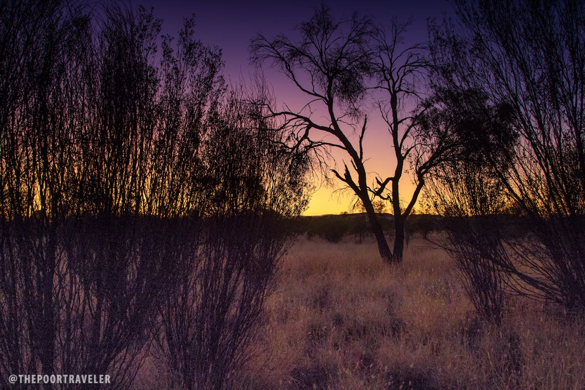 The harsh Outback at sunset