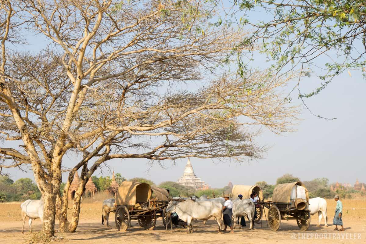 Bagan Locals