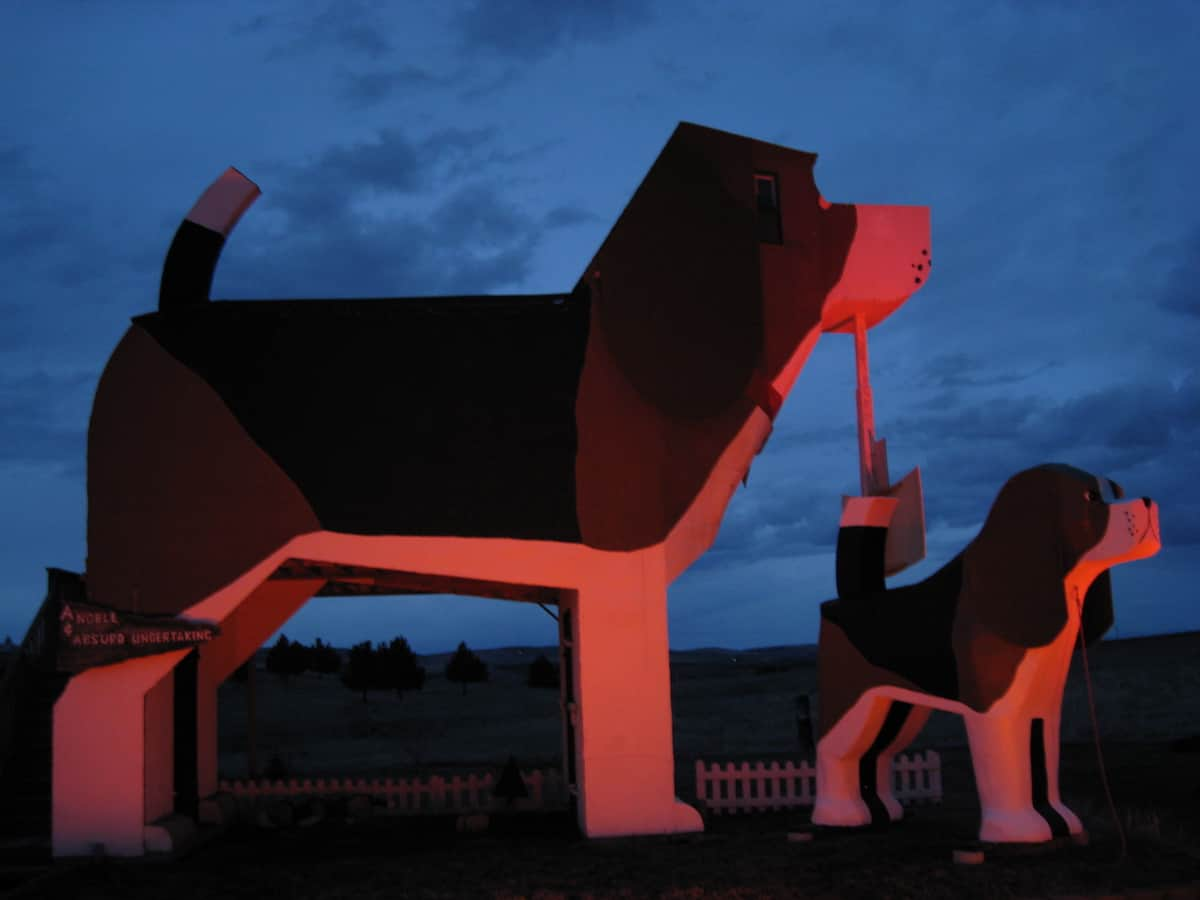 Photo courtesy of The Dog Bark Park Inn