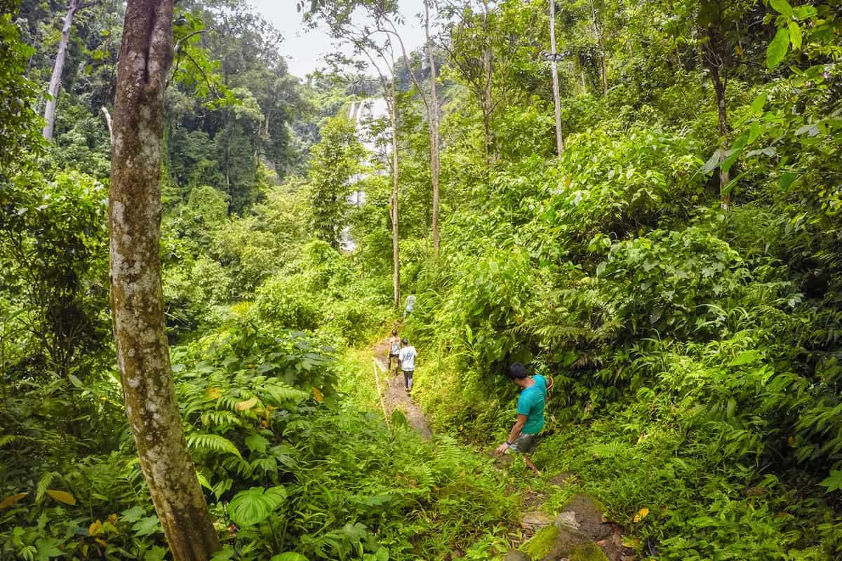 Trail to Hulugan Falls from Hidden Falls