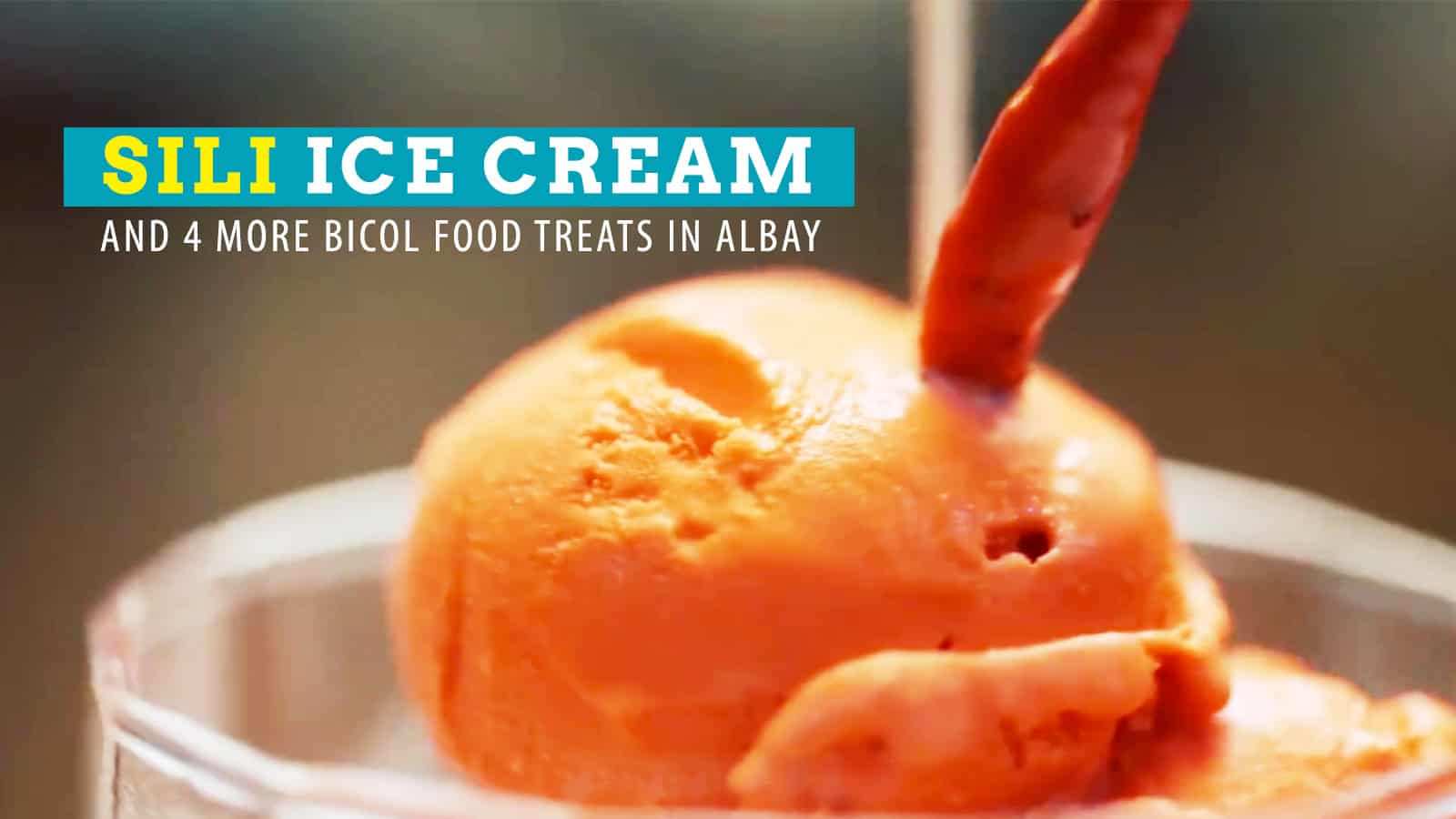5 Hot Bicolano Dishes to Try in Albay (Sili Ice Cream