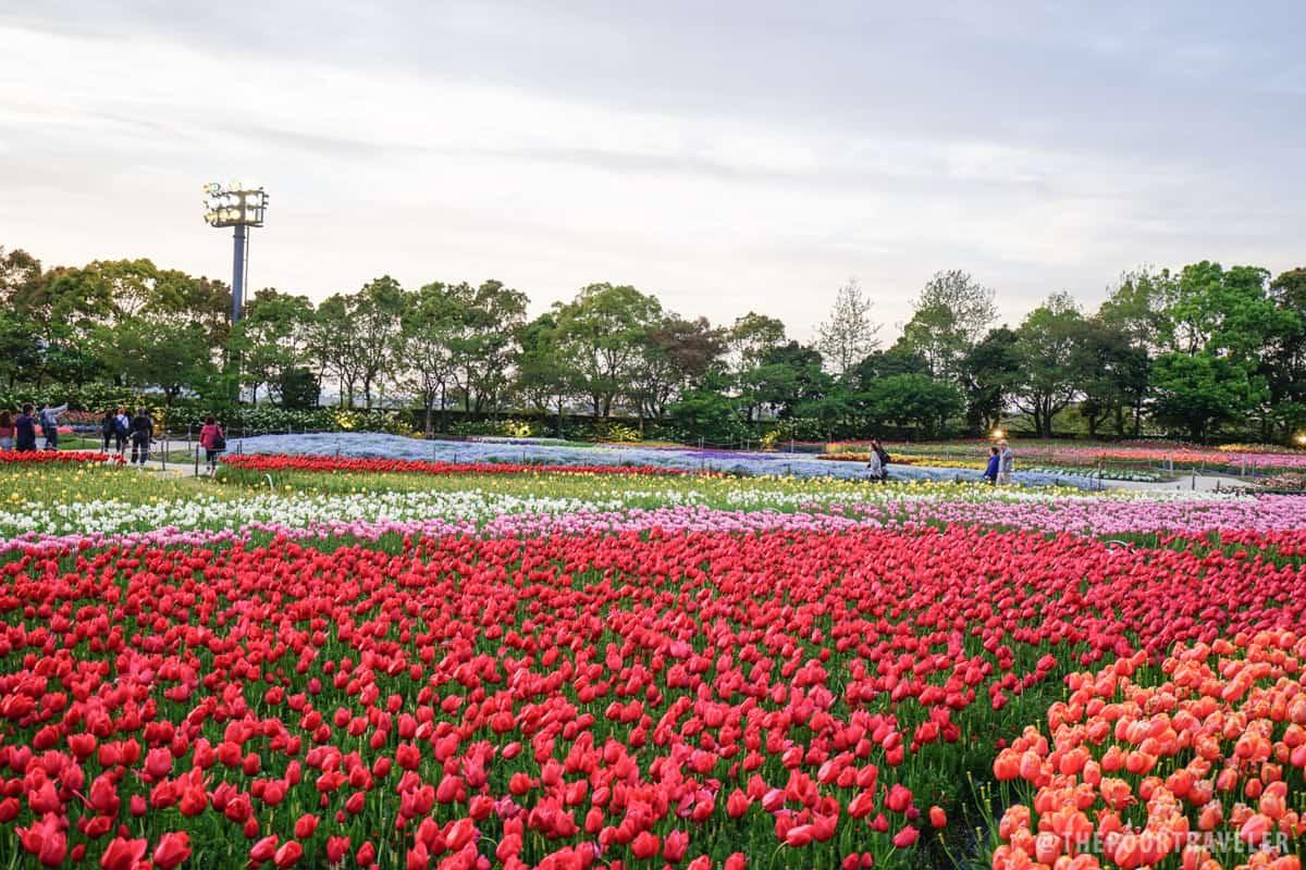 Nabana no Sato Park