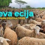8 Agri-Tourism Destinations in Nueva Ecija
