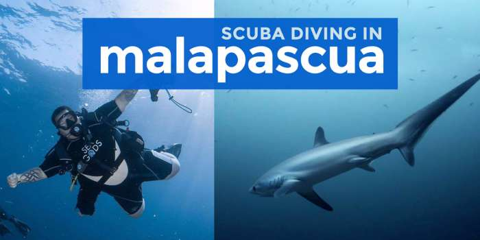 Scuba Diving in MALAPASCUA ISLAND