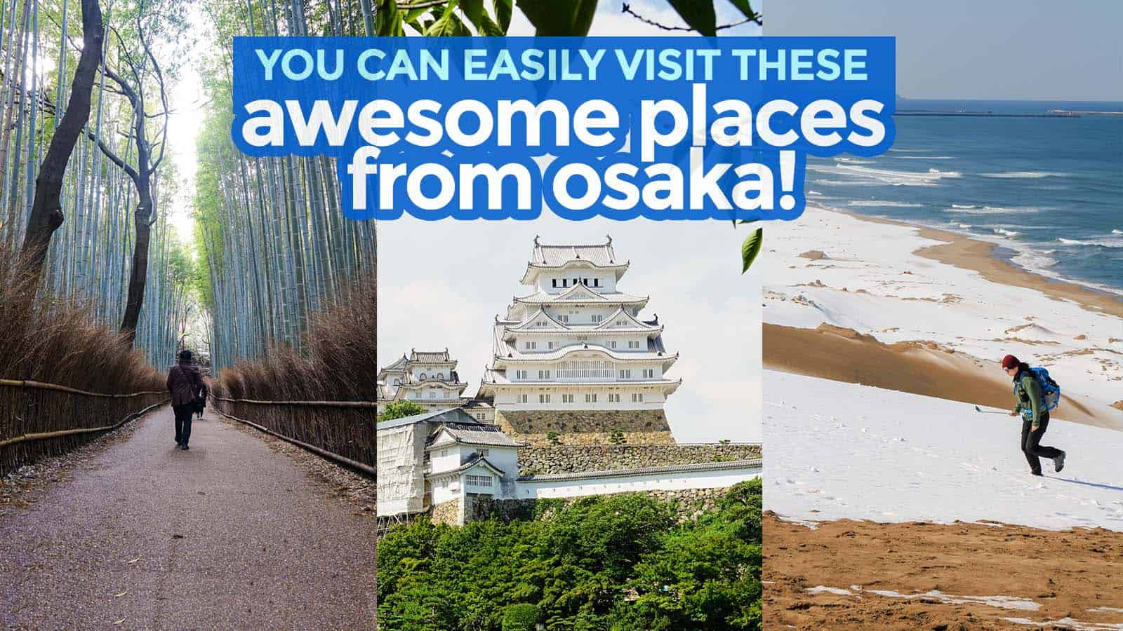 7 DESTINATIONS YOU CAN EASILY VISIT FROM OSAKA