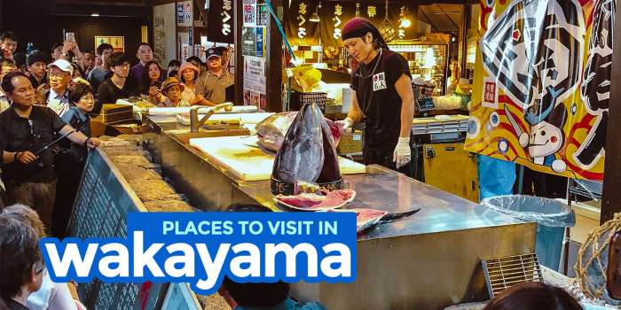 7 THINGS TO DO IN WAKAYAMA