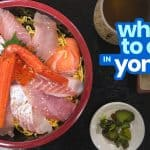 WHERE TO EAT IN YONAGO, DAISEN & SAKAIMINATO