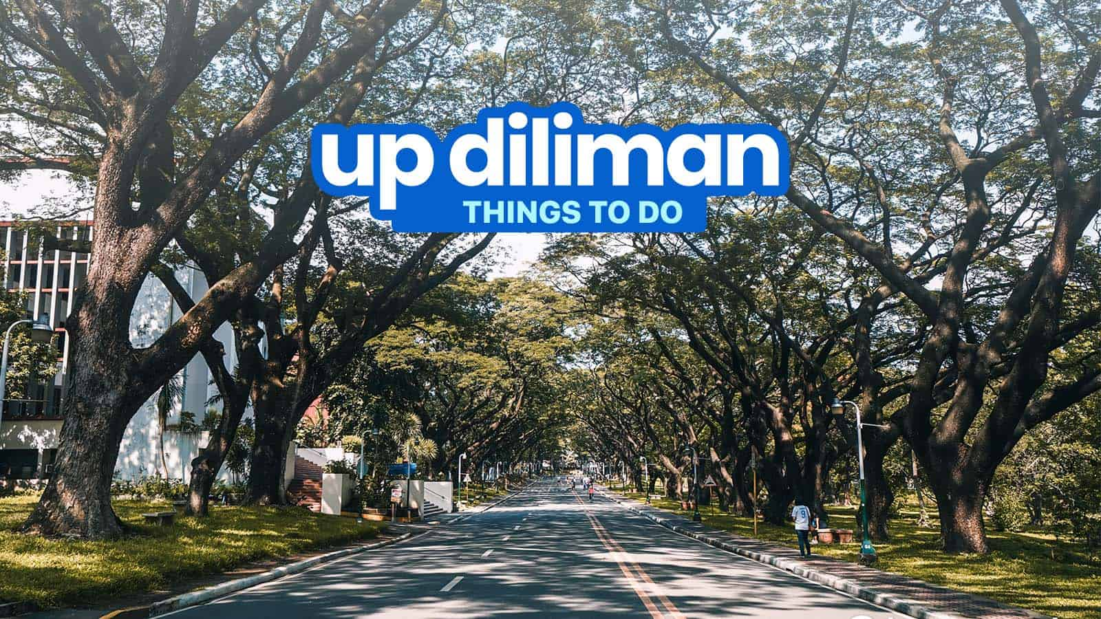 7 THINGS TO DO in UP DILIMAN