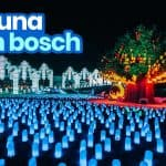 LAGUNA TEN BOSCH: Discounted Tickets, Best Rides, Hours Open