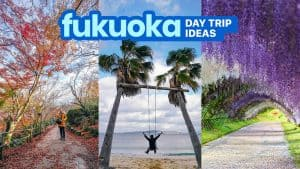 11 DAY TRIP DESTINATIONS FROM FUKUOKA