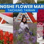 ZHONGSHE FLOWER MARKET: Travel Guide + How to Get There (Chung-She Garden, Taichung, Taiwan)