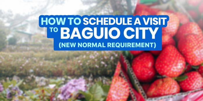 How to SCHEDULE A VISIT to BAGUIO: Step-by-Step Online Registration Guide (Baguio Visita)