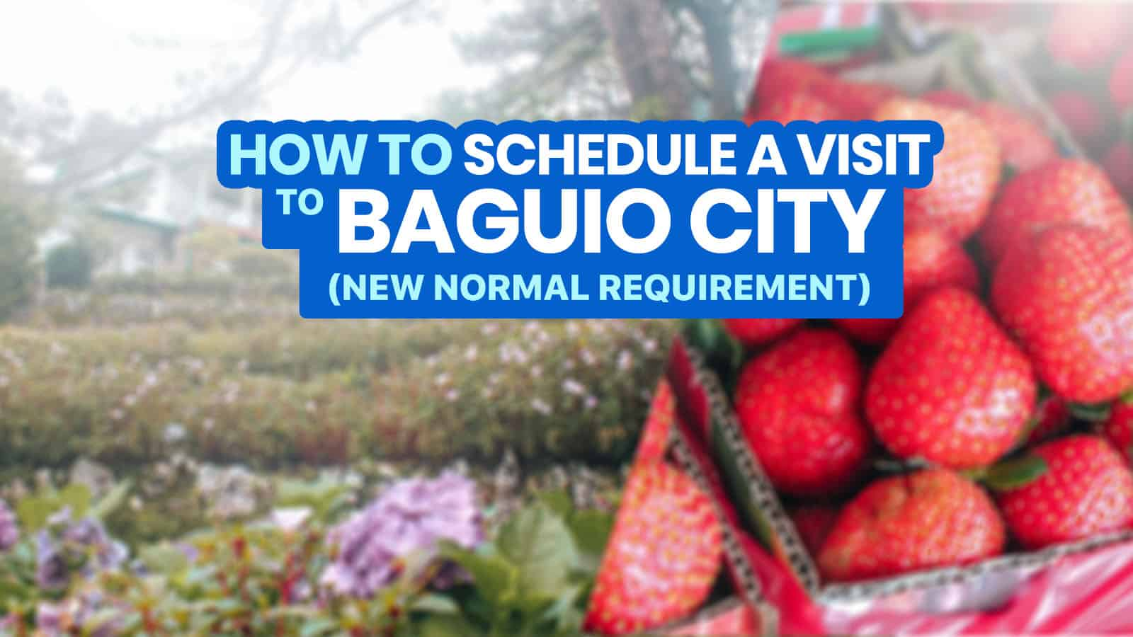 How to SCHEDULE A VISIT via BAGUIO VISITA 2021: Step-by-Step Online Registration Guide